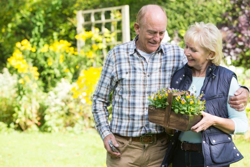 Couples supérieurs fonctionnant dans le jardin ensemble image libre de droits