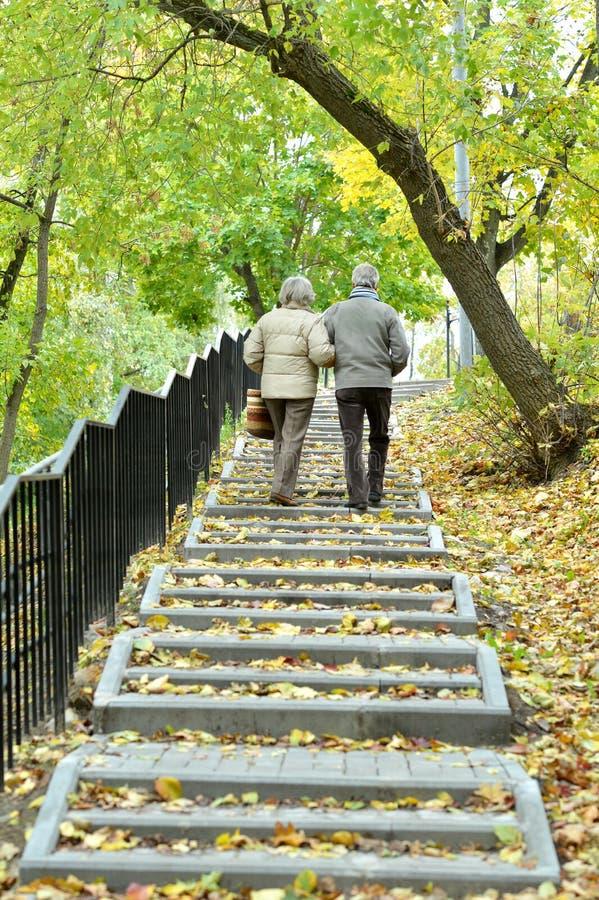 Couples supérieurs heureux dans la marche de parc d'automne photographie stock libre de droits