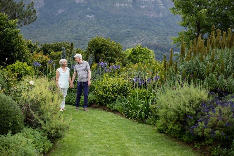 Couples supérieurs marchant dans la pelouse photographie stock