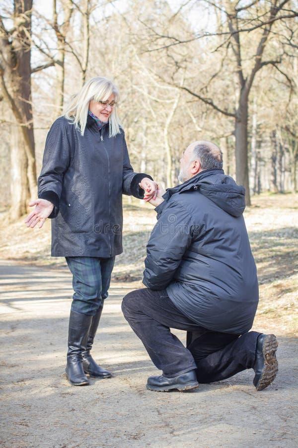 Couples supérieurs pluss âgé heureux extérieurs photo stock