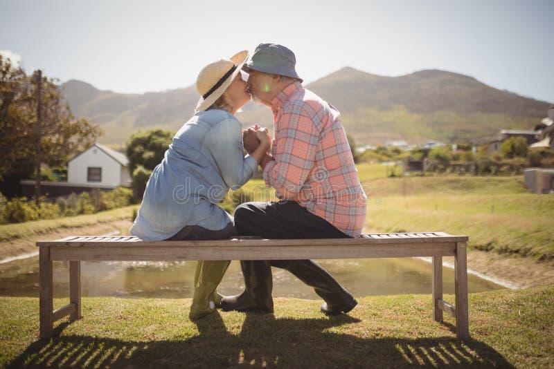 Couples supérieurs s'embrassant tout en se reposant sur un banc dans la pelouse images libres de droits