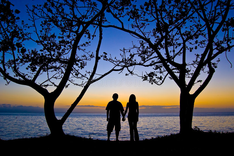 Couples under the tree at sunset royalty free stock photo
