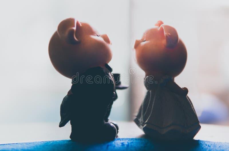 Couplez épouser porcin d'amour images stock