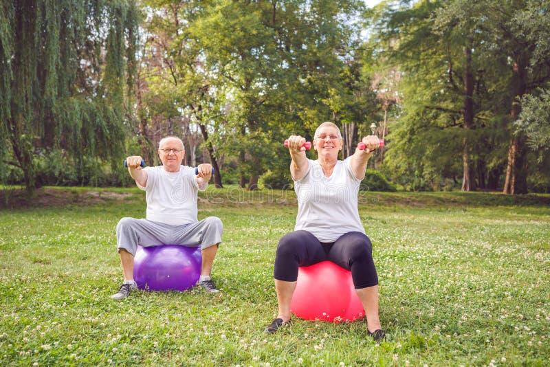 Couplez l'homme et la femme faisant des exercices de forme physique sur la boule de forme physique en parc photo stock