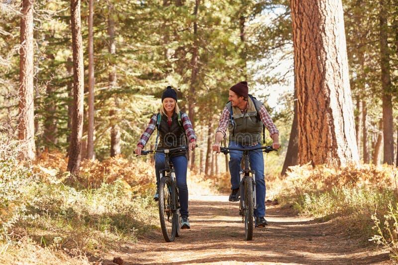 Couplez la montagne faisant du vélo par la forêt, Big Bear, la Californie image stock