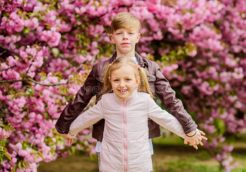 Couplez les beaux enfants adorables marchent le jardin de Sakura Sentiments tendres d'amour Gosses heureux Date romantique en par images libres de droits