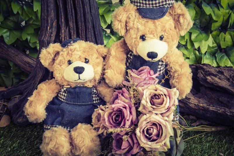 Couplez les ours de nounours avec s'est levé dans le jardin image stock