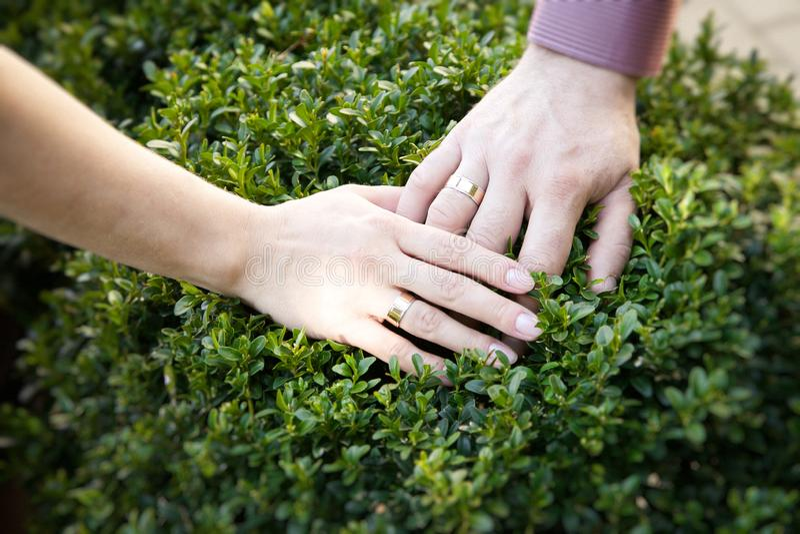 Couplez tenir des mains avec des bagues de fiançailles Joyeux je photographie stock