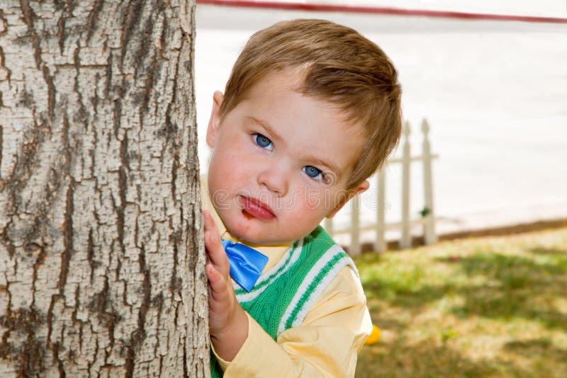 Coups d'oeil grincheux de garçon autour d'un arbre image libre de droits