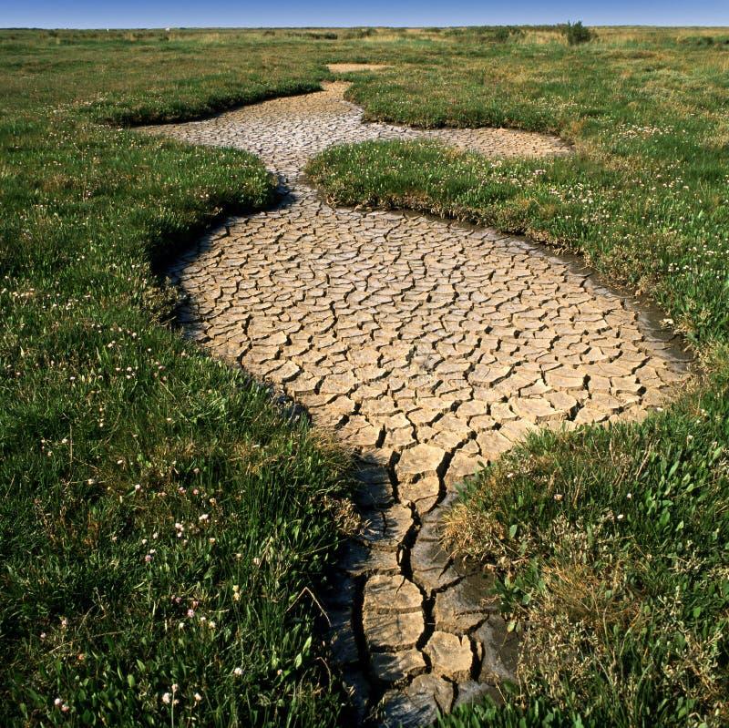 Coups de sécheresse photographie stock libre de droits