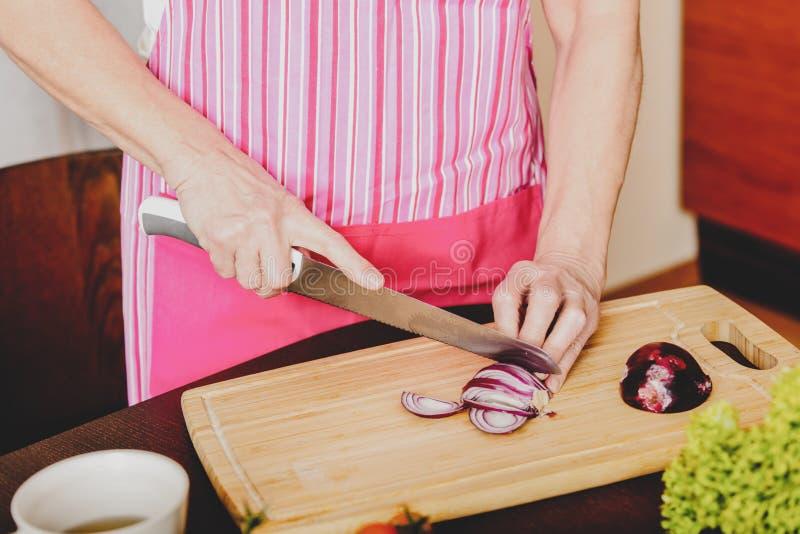 Coupure de l'oignon rouge d'ampoule image stock