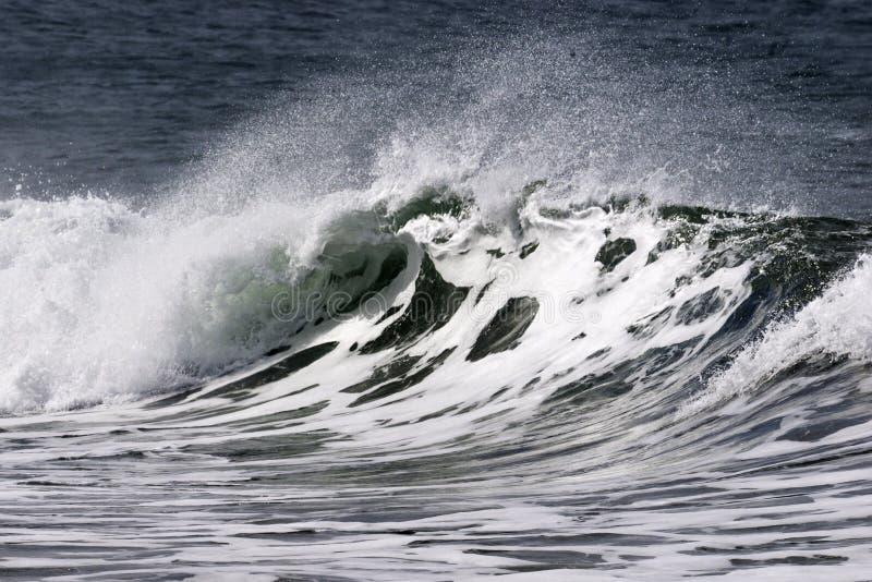 Coupure de plage photo libre de droits