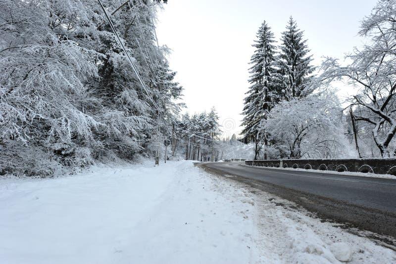 Coupure de route de l'hiver image libre de droits