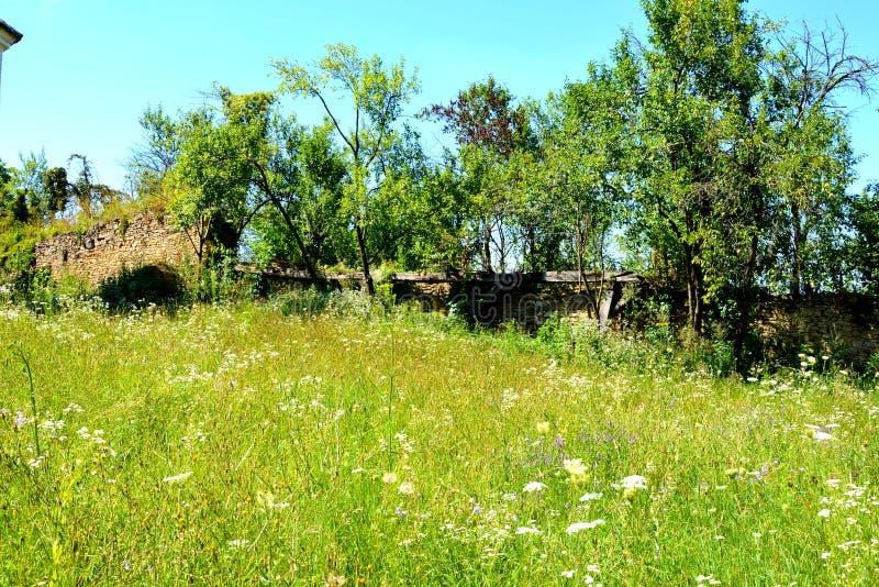 Cour de l'église saxonne médiévale enrichie dans Rodbav-Rohrbach, le comté de Sibiu, la Transylvanie ruines photo stock