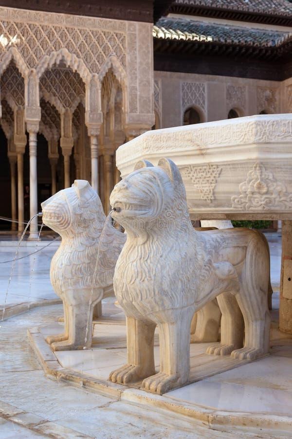Cour des lions images stock