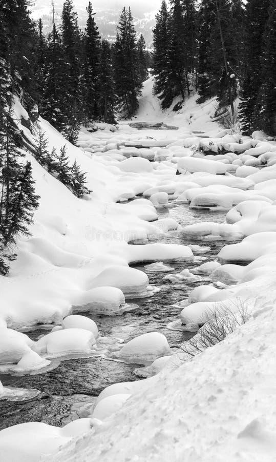 Courant débordant par la neige et la glace images libres de droits