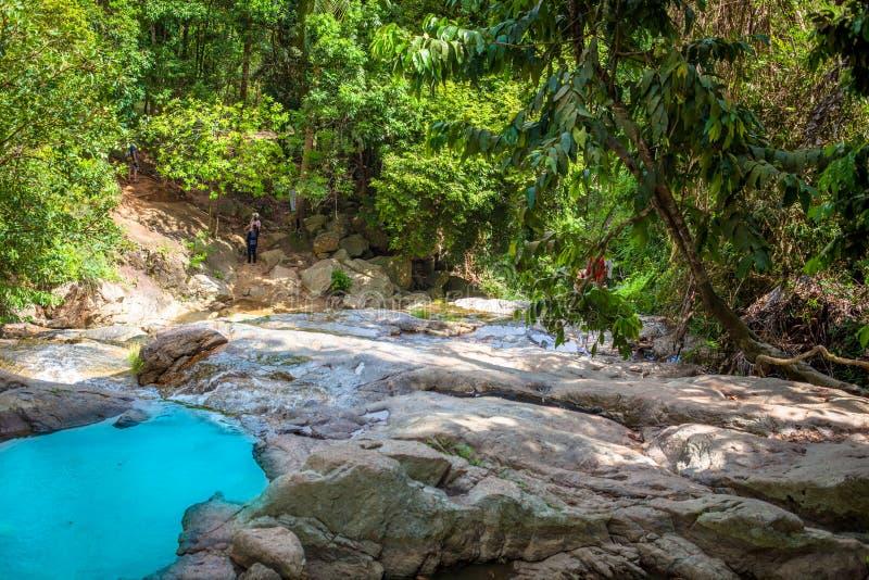 Courant dans la forêt tropicale images stock