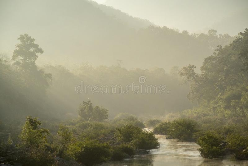 Courant dans le matin flou images stock