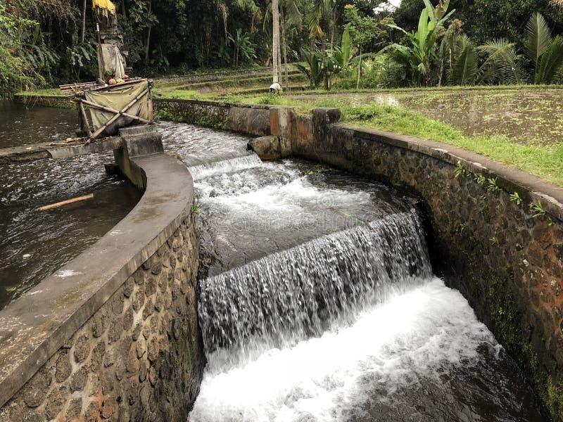 Courant de l'eau entrant entre deux murs de roche avec des usines dans le fond photos stock