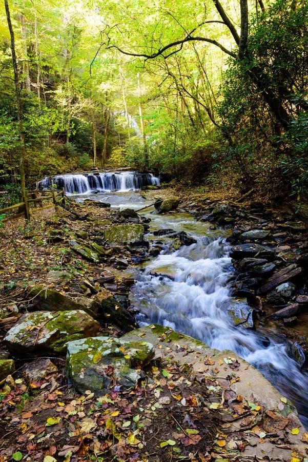 Courant de montagne avec de l'eau l'écoulement de l'eau photo libre de droits