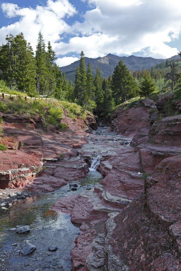 Courant de montagne traversant le canyon rouge de roche - lacs Waterton photos libres de droits