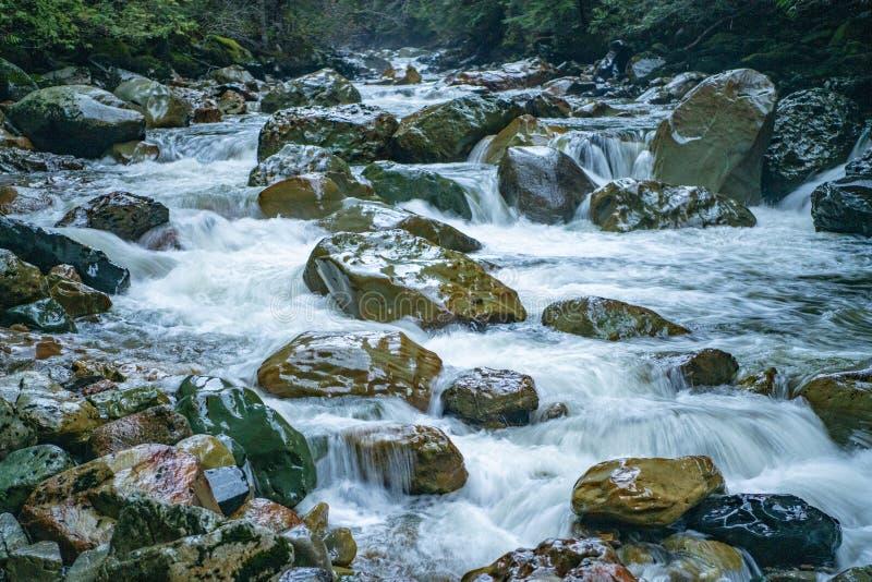 Courant de montagne - Washington State photographie stock