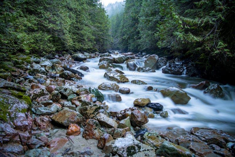 Courant de montagne - Washington State photos libres de droits