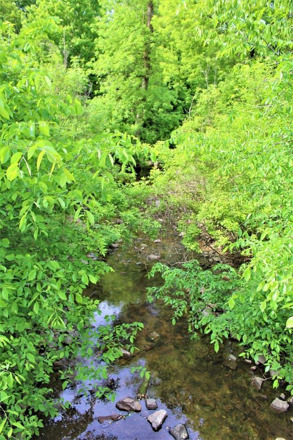 Courant de rivière de truite, Franklin County, Malone, New York, Etats-Unis image libre de droits