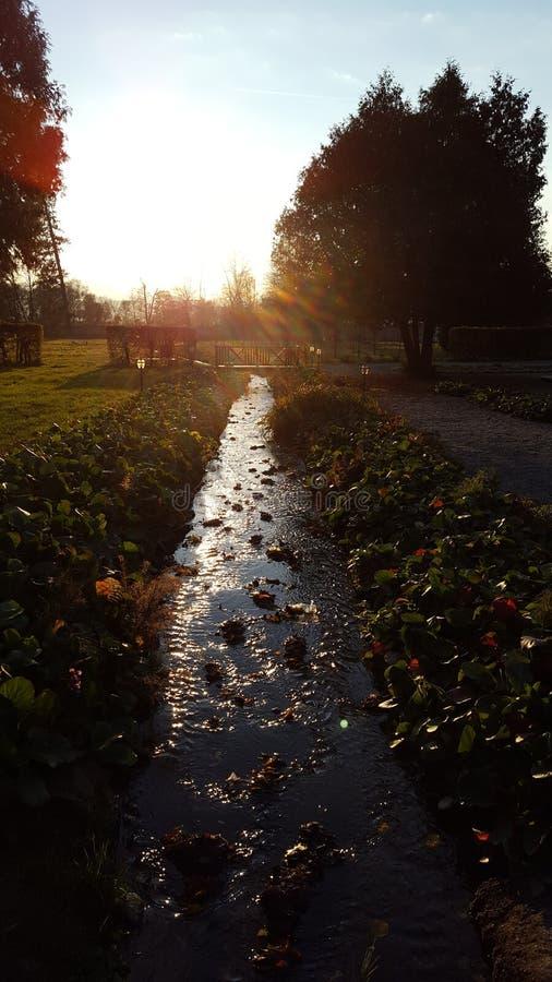 Courant en automne photo libre de droits