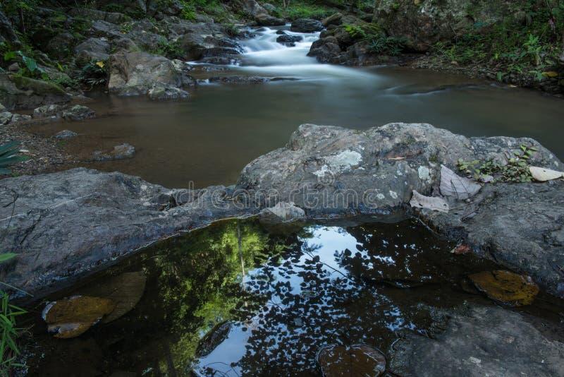 Courant naturel de cascade dans la forêt tropicale photographie stock libre de droits