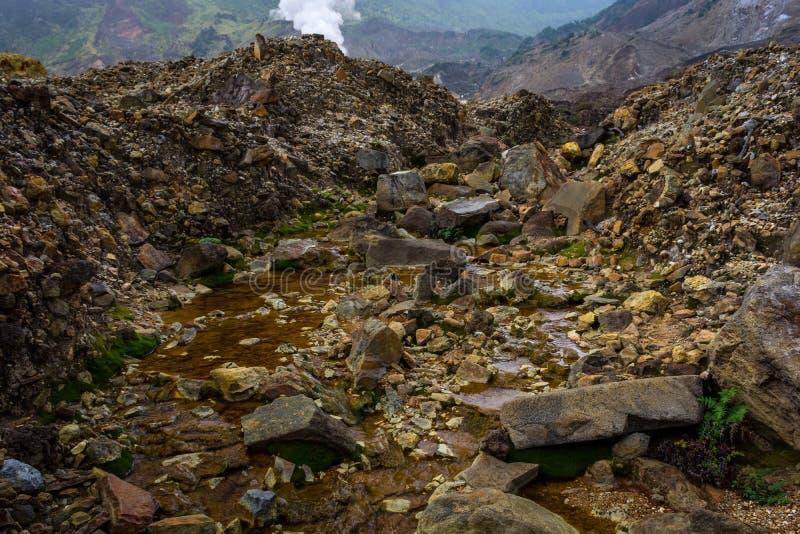 Courant rocheux avec de l'eau brun sur une montagne Beau paysage de b?ti Papandayan La montagne de Papandayan est une du favori photo libre de droits