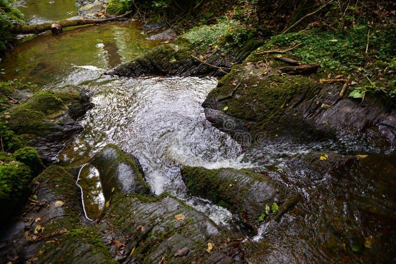 Courant sauvage Brodenbach à côté de rivière de la Moselle photo libre de droits