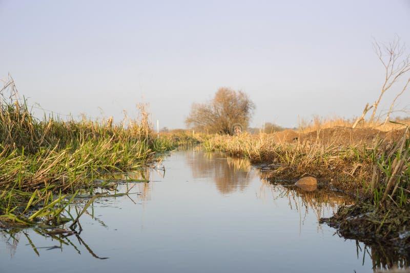 Courant silencieux de rivière en nature sauvage image libre de droits