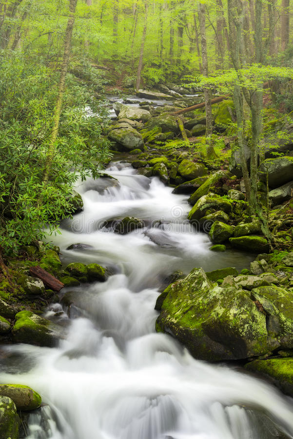 Courant tranquille dans le Smokies photos stock