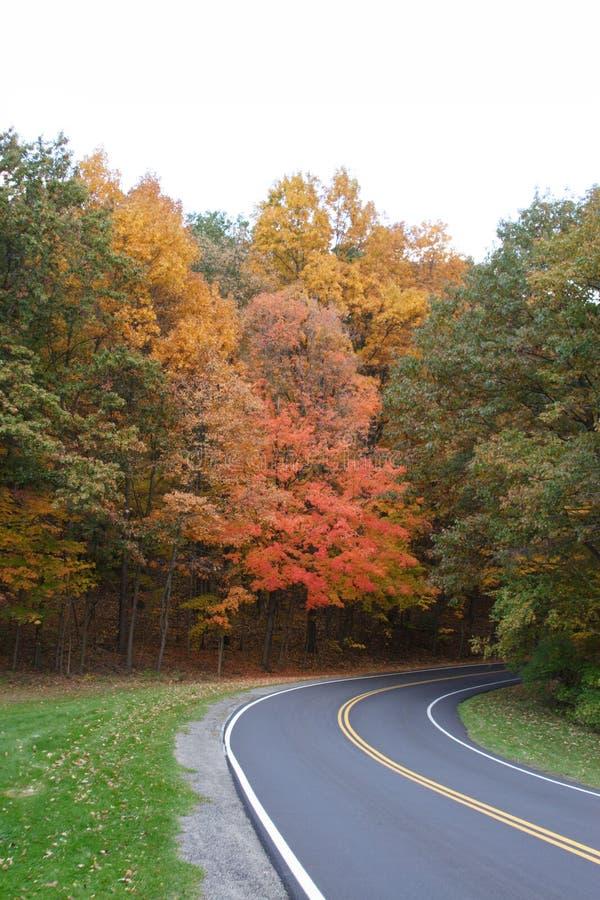 Courber la route image stock