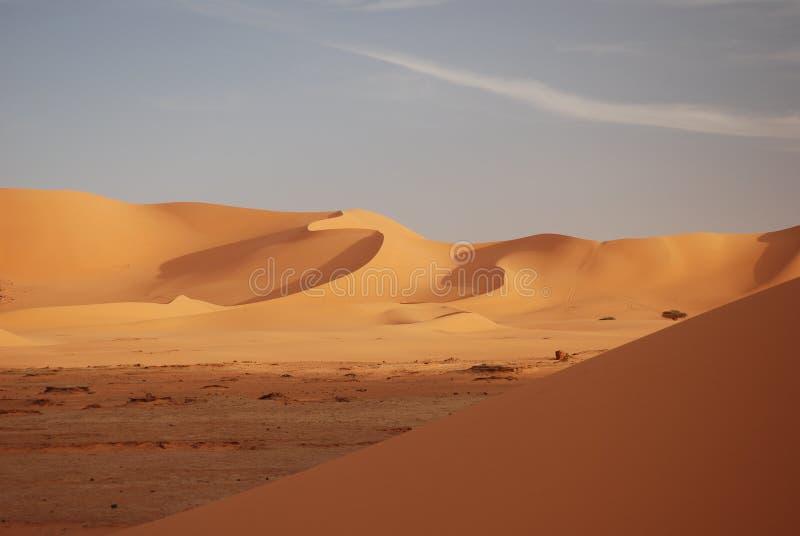 Courbes de sable image stock