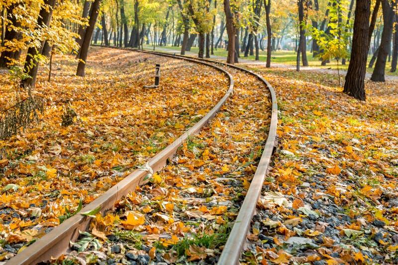 Courbes ferroviaires allant par le fond chaud de voyage de chute de belle forêt orange Concept saisonnier de voyage image libre de droits