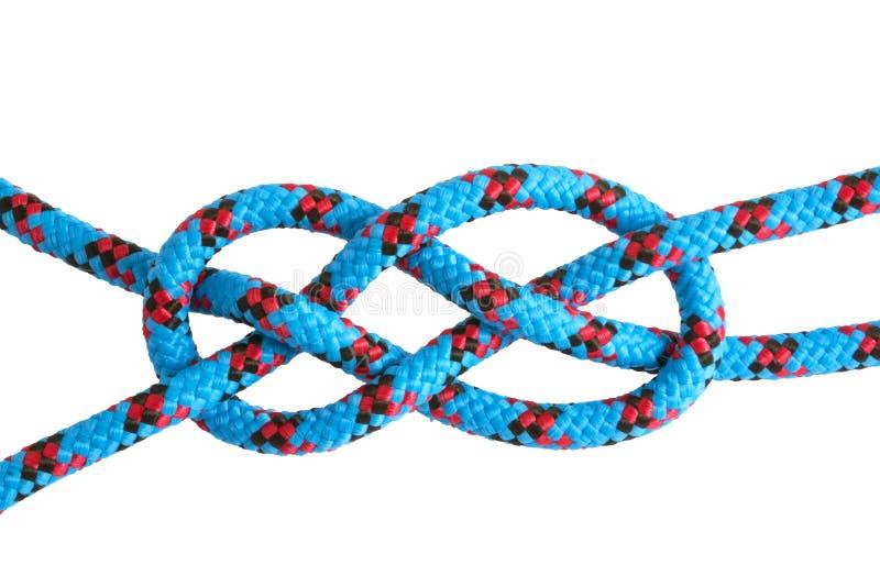 Courbure de feuille de corde et de noeuds images libres de droits