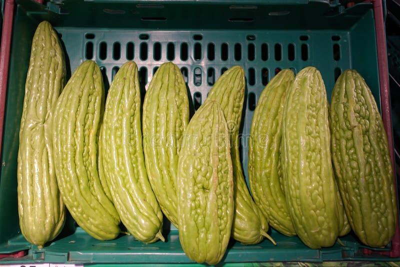 Courge amère de melon pour la cuisson image stock