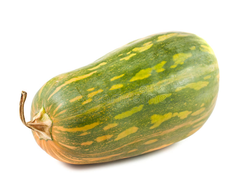 Courge verte image stock