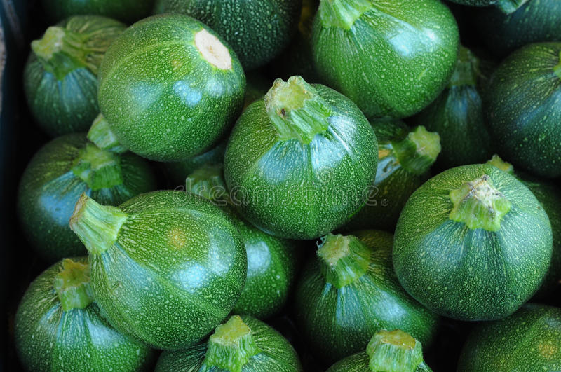Courgette stock photography