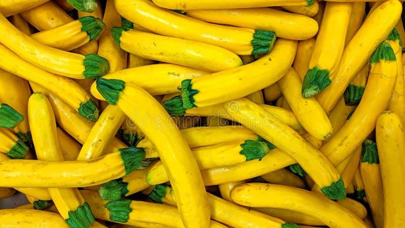 Courgette jaune en vrac illustration de vecteur