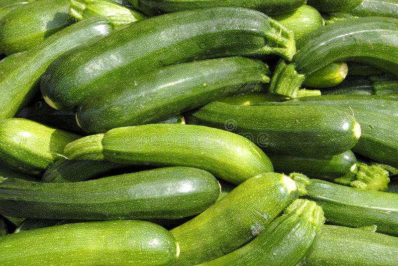 Courgettes imagens de stock royalty free