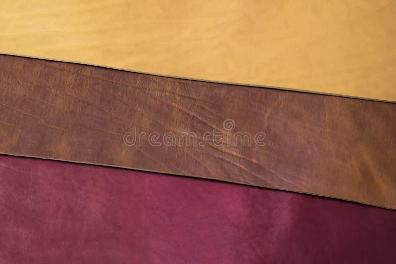 Couro de três cores fotografia de stock