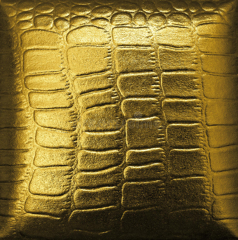 Couro dourado do crocodilo foto de stock