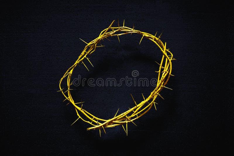 Couronne des épines jaune sur un fond noir, vue supérieure photographie stock libre de droits