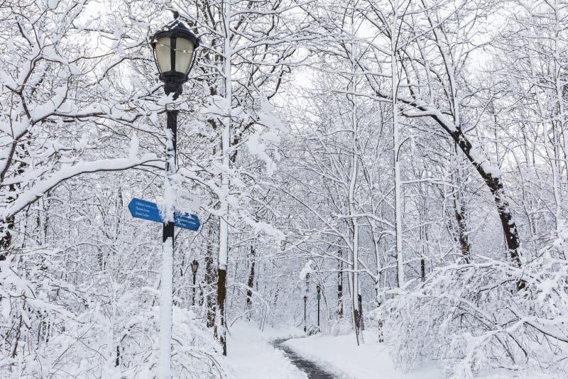 Courrier de signe de Milou de parc de perspective image libre de droits