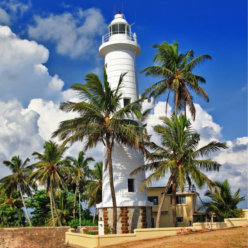 Course Au Sri Lanka Photos libres de droits