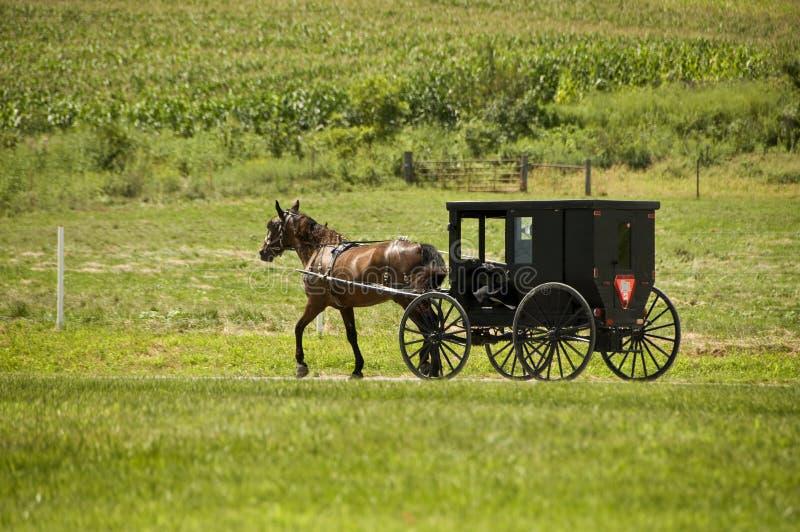 Course d'Amish photographie stock