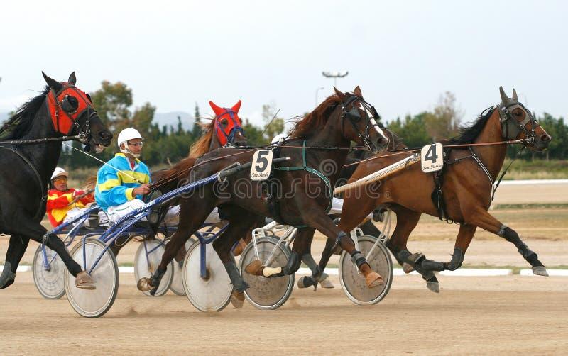 Course d'attelages de cheval dans l'hippodrome de Palma de Majorque image libre de droits